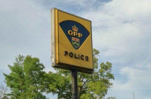 OPP News Portal
